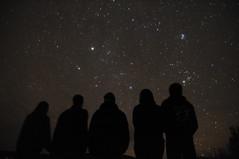 [フリー画像] 人物, 人と風景, 空, 夜空, 集団・グループ・群衆, シルエット, 201011181900