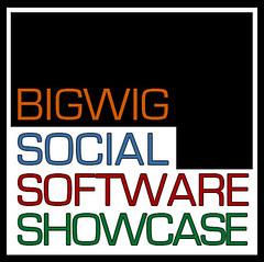 bigwig social software logo