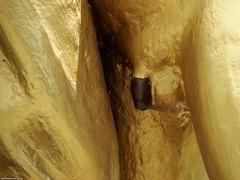 Thai boy's penis