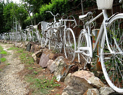 bicycle fence.