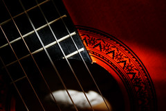 Acoustic detail (melalouise) Tags: wood music guitar musical instrument acoustic strings