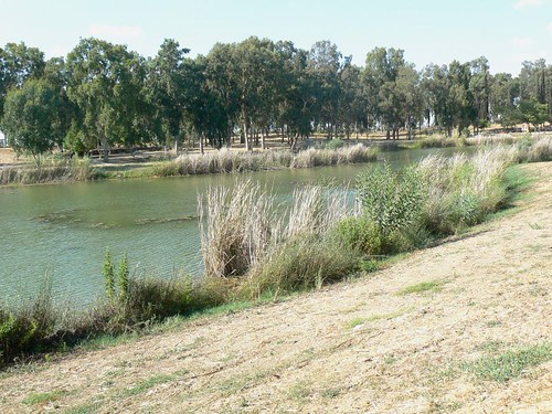 yarkon source
