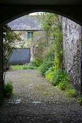 want to take a look? (Tomsch) Tags: ireland plants house building tag3 taggedout tag2 tag1 village entrance irland eire lismore