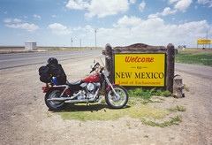 Wichita Falls to Denver (twm1340) Tags: newmexico colorado crash harley deer 1998 dyna superglide fxd