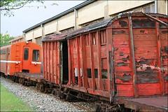 阿里山森林鐵路115