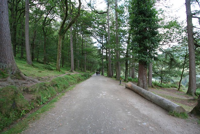 path to upper lake