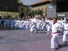 Karate San Mateo 2007