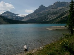 Bow Lake (palestrina55) Tags: canada mountains 2004 landscape glacier alberta rockymountains kanada banffnationalpark bowglacier cans2s flickrchallengegroup palestrina55 photofaceoffwinner pfogold achallengeforyou fotocompetitionbronze