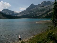 Bow Lake (palestrina55) Tags: canada mountains 2004 landscape glacier alberta rockymountains kanada banffnationalpark bowglacier cans2s flickrchallengegroup palestrina55 photofaceoffwinner pfogold achallengeforyou fotocompetitionbronze