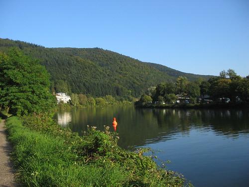 Neckar view