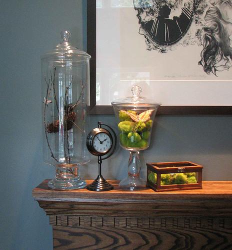 apothecary jars by Mudrick.