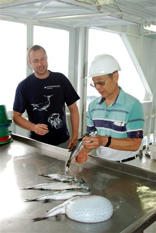 Jens-Otto Krakstad and Dr. Iwamoto examining dead puffers. Photo by O. Alvheim 2010