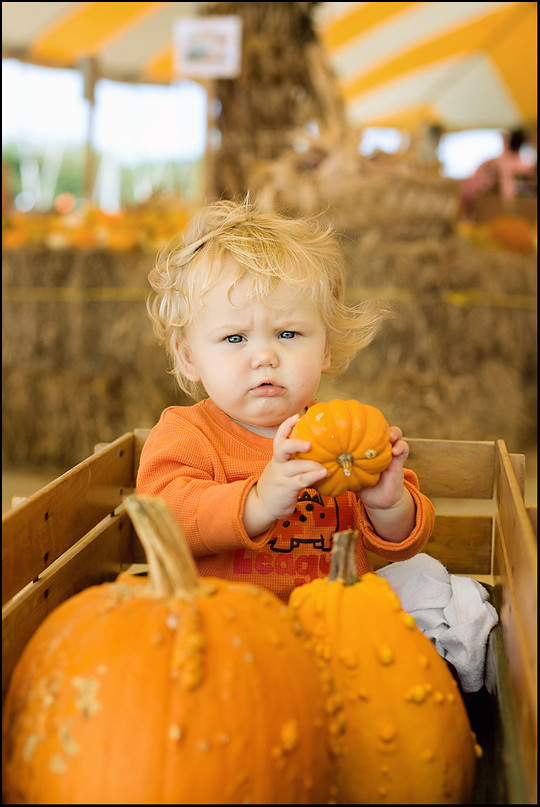 wspumpkin (8 of 8)