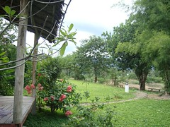 ฃฅฑ - view from cottage