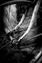 rusty wheel - by Sapo Essay