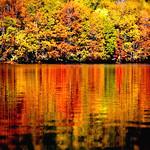 *Autumn Colors