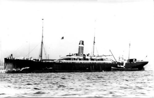 Californian1891
