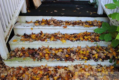 LeafySteps