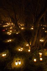 Skogskyrkogården på Allhelgona