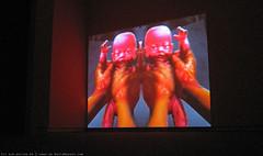 documenta 12 | Churchill Madikida / Nemesis | 2005 | Neue Galerie