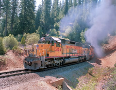 "3,000 horsepower EMD-built SD40 locomotive 3104 leads a Union Pacific northbound freight train near Westwood and Lake Almanor, California, on the ""highline"" of the former Western Pacific, May, 1984. This line is now owned and operated by BNSF. (Ivan S. Abrams) Tags: california arizona up volcano nebraska tucson nevada ivan trains sierra amtrak sp fresno getty unionpacific freighttrains reno"
