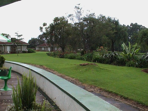 Kericho Tea Hotel Landscape