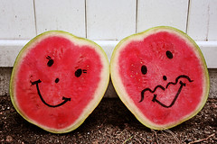 Our Love is One in a Melon (boopsie.daisy) Tags: pink 2 two silly cute love fruit fence couple faces sweet pair smiles romance moustache soil romantic halves corny cheesy watermelons twosome happyfaces