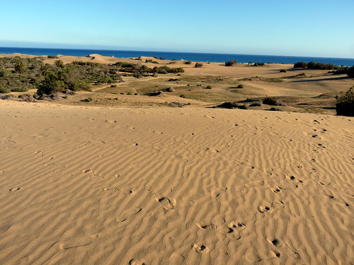 Gran Canaria - Maspalomas Dunes in the Sping ...