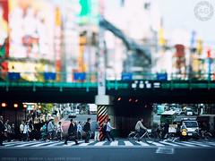 Tokyo Tilt-shift: Shinjuku mle, Tokyo (Alfie | Japanorama) Tags: street bridge people japan train japanese tokyo shinjuku crossing crowd tracks crowds salaryman zebracrossing tiltshift macrobellows mamiya645afd realtiltshift zddigitalback kodakektar127mmf47lens 1948vintagelens