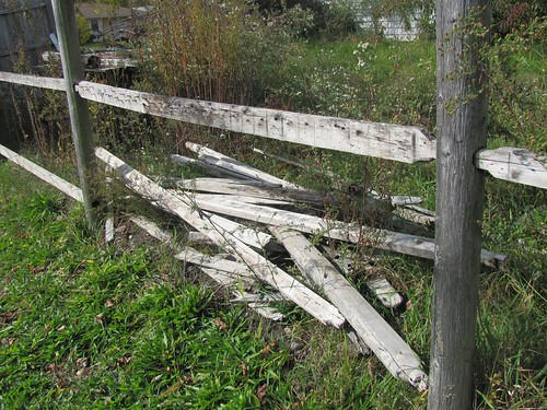 silver fence boards