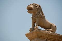 Lion at the castle (bin duaij) Tags: castle statue focus close lion egypt mosque ali cairo egyptian giza mohammad     basha