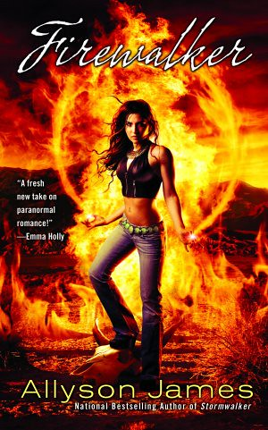 Firewalker (Stormwalker, #2) by Allyson James