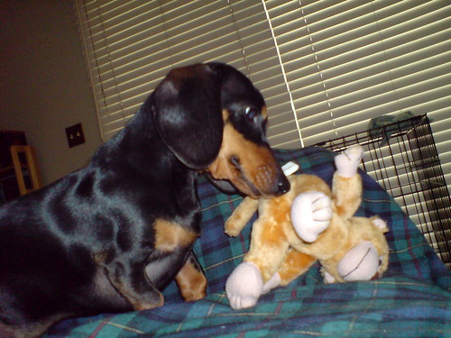 Holli and her monkey