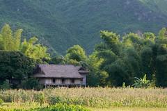 Maison près de la forêt Mai Chau Vietnam