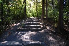 Stone steps, Hogs Back