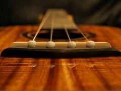 P5069469_post (Ki'i Akamai) Tags: music classic ukulele bokeh olympus hawaiian dslr simple koa e420 olympuse420