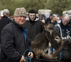 Selling his stock at Maam Cross fair (Frank Fullard) Tags: street ireland portrait horse heritage galway candid donkey fair pony connemara selling clifden maam maamcross fullard frankfullard