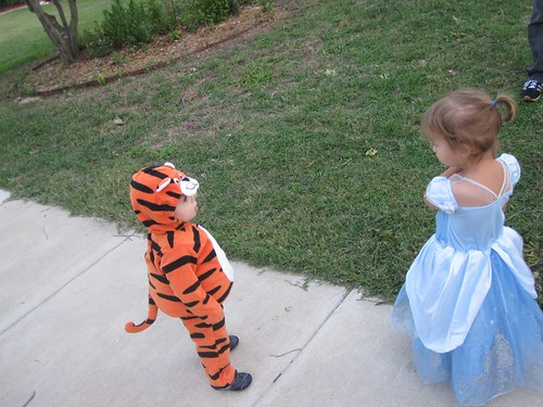 Tiger and Cinderella