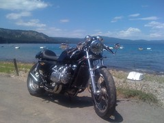 79 Honda Cafe Racer Goldwing (Marco Greywe) Tags: classic bike vintage cafe norton triumph cb 1000 caferacer racer goldwing bsa cb750 gl comando gl1000