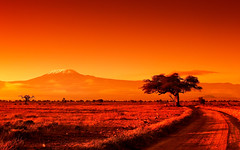 African Heat (| HD |) Tags: africa orange mountain 20d kilimanjaro nature canon landscape fire mt kenya safari filter hd darwish hamad amboseli cokin