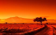 African Heat (| HD |) Tags: africa orange mountain 20d kilimanjaro nature canon landscape fire mt kenya safari filter hd darwish hamad amboseli cokin