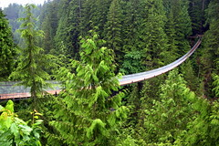 Capilano Suspension Bridge - Vancouver - Canada ({ Planet Adventure }) Tags: holiday canada vancouver wow photography photo interesting bravo photographer ab adventure planet thebest allrightsreserved interessante digitalphotography holidayphotos capilanobridge stumbleupon copyright travelguide travelphotography digitalworld intrepidtraveler traveltheworld planetadventure colorfulworld worldexplorer amazingplanet by{planetadventure} byalessandrobehling intrepidtravel alessandrobehling stumbleit topphotography holidayphotography alessandrobehling copyright20002008alessandroabehling colorfulearth photographyhunter photographyisgreatfun