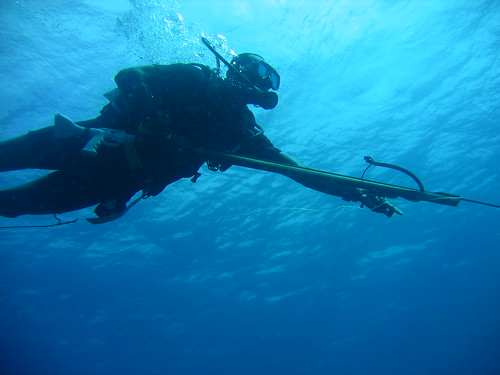 spearfishing fishing underwater