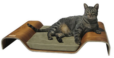 Bent Pet Bed by Pre Fab Pet
