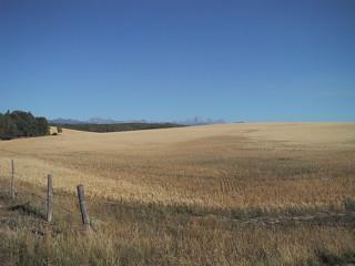 The Idaho Prairie