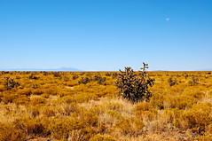 Endless (Fort Photo) Tags: moon nature landscape colorado vivid bluesky co prairie grassland seco minimalist grasslands cholla 2007 csp purgatoire losanimas centralshortgrassprairie purgatoireriver impressedbeauty southeastcolorado purgatoireriverbasin