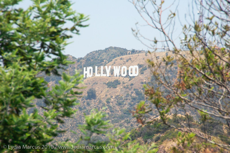 Hollywood Summer
