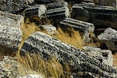 Should I fall behind (TMtheSign) Tags: italy nikon italia d70s sicily sicilia agrigento greco selinunte tempio greektemple tempiogreco