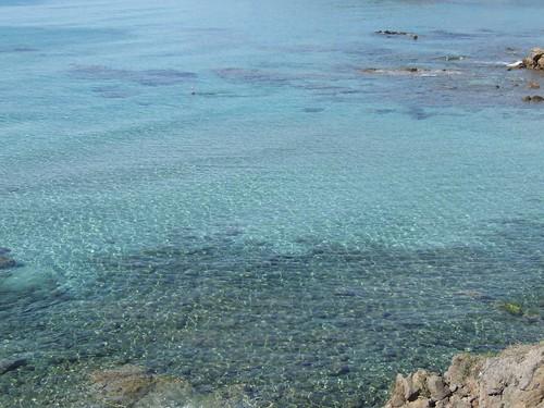 Acqua di Turri