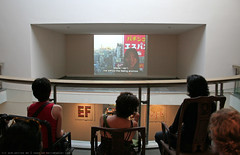 documenta 12 | Hito Steyerl / Lovely Andrea | 2007 | Fridericianum 3. floor